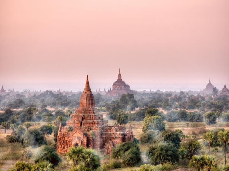 Tempelfelder von Bagan