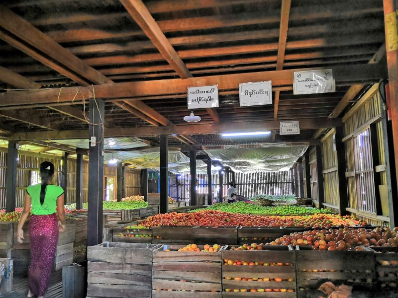 Inle See Myanmar Tomatenhaus