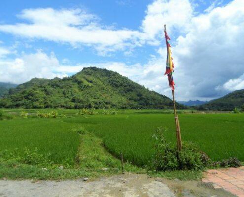 Bergwelt in Vietnam. Trockene Halong Bucht und grüne Reisfelder.