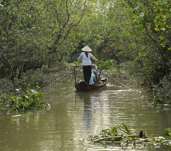 Mangrovenwald im Mekong Delta