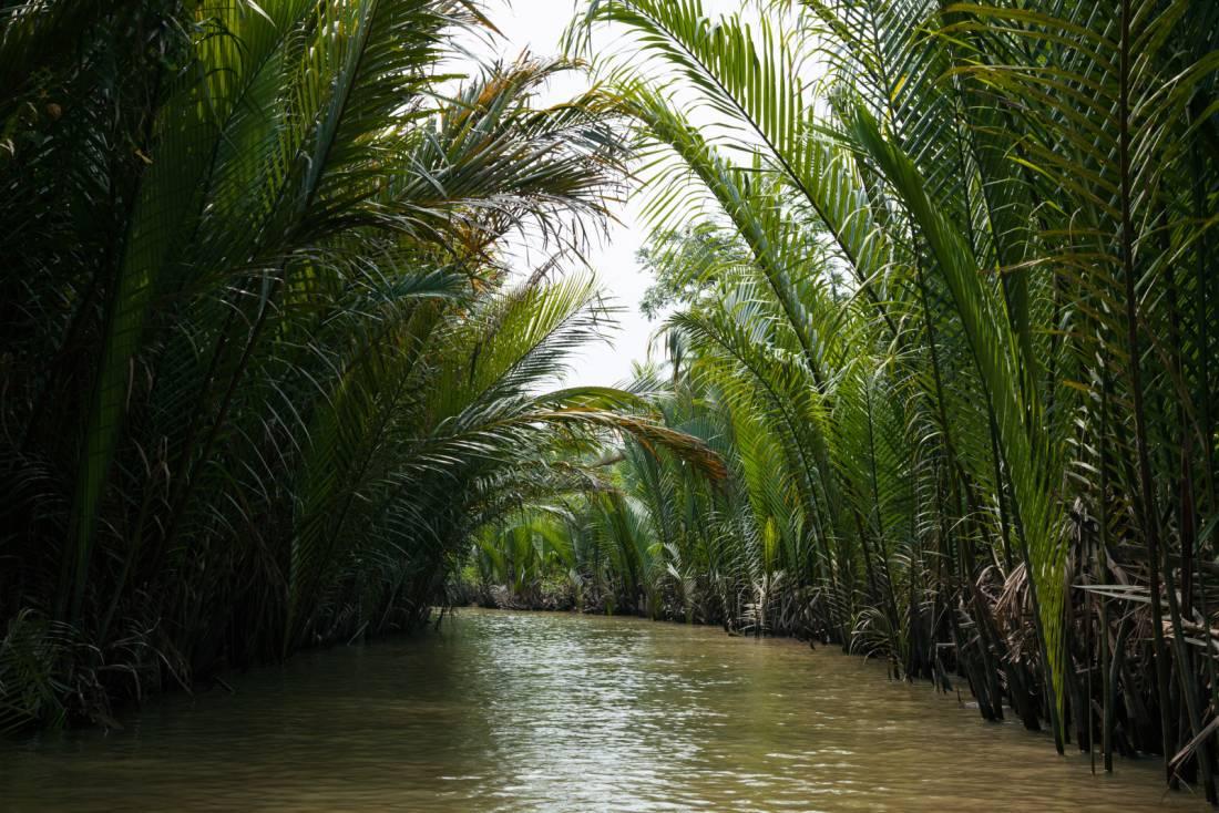 Ein Blick in einen engen Kanal im Mekong Delta