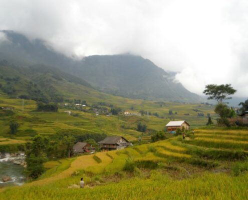 Sapa Reisfelder im Nebel Vietnam