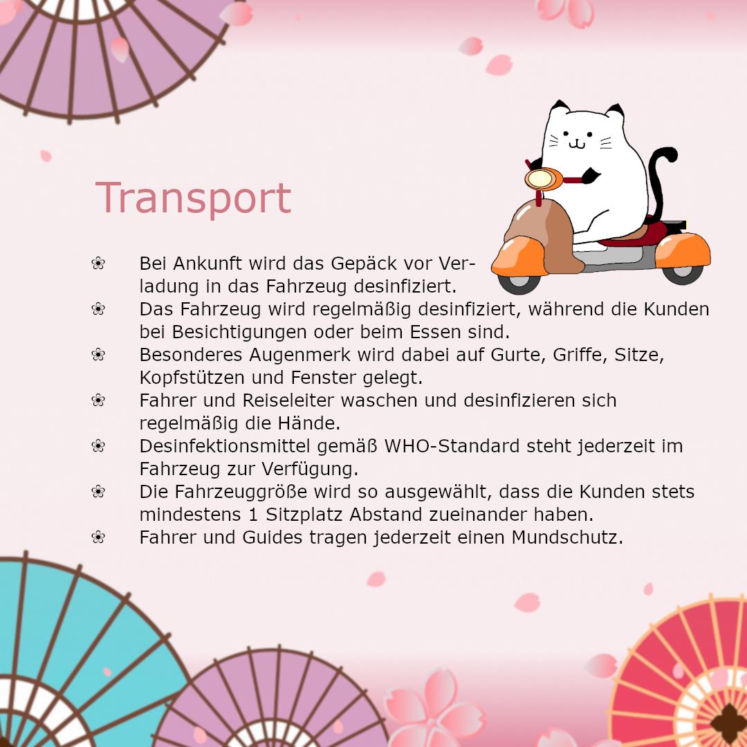 Corona Reise Infos
