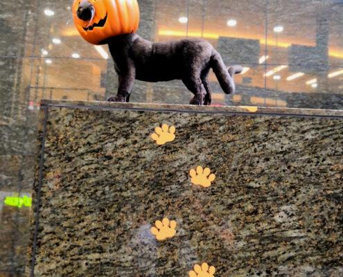 Halloween Deko Japan